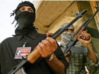 algeria_terrorism