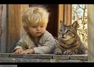 cute_child_$_cat_Wallpaper_y1n5m