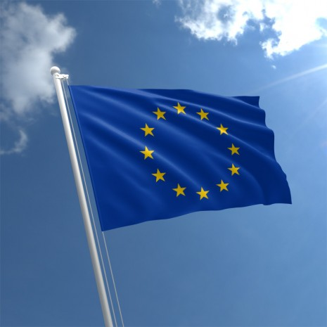 european-union-flag-std_1